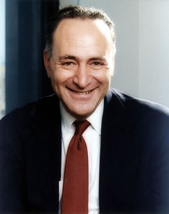 Schumer's Senate portrait
