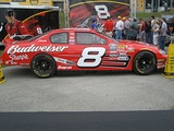 The No. 8 owned by Teresa Earnhardt.