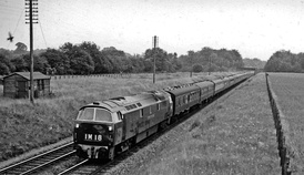 Class 52 hauling an express from Paddington to Birkenhead Woodside near Seer Green in 1962