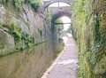 Canal cutting by Chester city walls