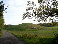 Jellhaugen, Norway's 2nd biggest tumulus. Photo: Tore Schrøder