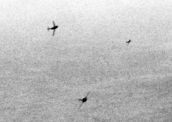 Mikoyan-Gurevich MiG-15 fighters curving in to attack U.S. Air Force Boeing B-29 Superfortress bombers over Korea, c.1951