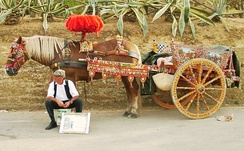 A traditional Sicilian cart