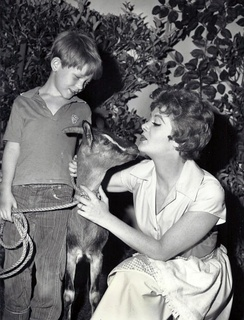 With Cara Williams in Pete and Gladys in 1960