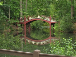 Crim Dell bridge in the heart of W&M's wooded campus
