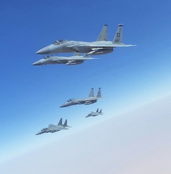 USAF F-15C's from the 44th EFS fly in formation with Royal Saudi Air Force F-15SA's on 25 June 2020
