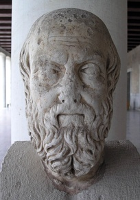Herodotus, the main historical source for this conflict