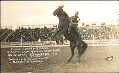 Fannie Sperry Steele, Champion lady bucking horse rider, Winnipeg Stampede, 1913
