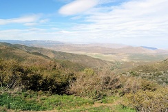 View from the Laguna Mountains, chaparral in the foreground