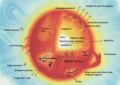 This diagram shows a cross-section of the Sun.