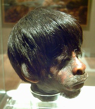 Shrunken head of a mestizo man by Jívaro indigenous people. In 1599, the Jivaro destroyed Spanish settlements in eastern Ecuador and killed all the men.