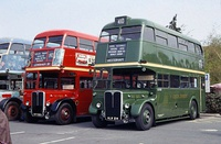 Red and Green RT buses which ran for London Transport's Central and Country Bus departments respectively.