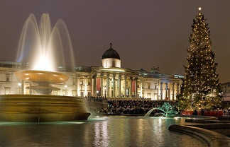Trafalgar Square Christmas Tree with lights in London, England