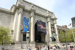 The American Museum of Natural History in New York City.