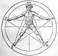 Man inscribed in a pentagram, from Heinrich Cornelius Agrippa's De occulta philosophia libri tres. The five signs at the pentagram's vertices are astrological.