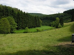Typical Luxembourg countryside near Alscheid