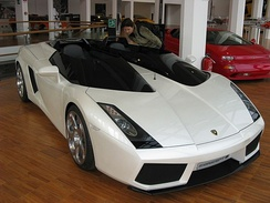 The Concept S, a Gallardo derivative