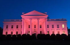 White House illuminated pink in honor of National Breast Cancer Awareness Month in 2017