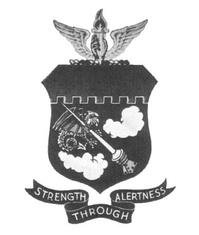 Legacy 339th Fighter Group emblem