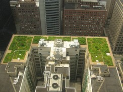 Green roof of City Hall in Chicago, Illinois.