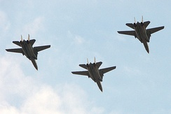 Formation flight of Iranian Tomcats, 2008