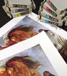 An image printed with a CcMmYKk ink set, on both paper and canvas stock.  The ink cartridges used are also shown.
