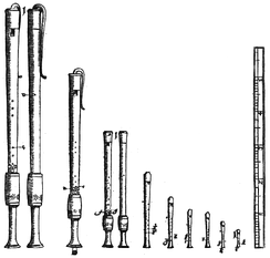 Recorders from Michael Praetorius's Syntagma Musicum (1619), the fourth and fifth from the left show front and back view of an F bass (basset)