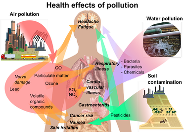 Overview of main health effects on humans from some common types of pollution.[49][50][51]