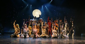 "The Jellicle cats gather every year to make the ""Jellicle Choice"", and decide which cat will ascend to the Heaviside Layer and come back to a new life."