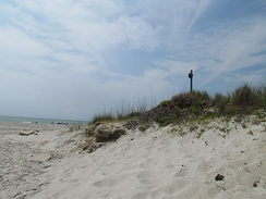 Myrtle Beach is protected from erosion by vegetation-filled sand dunes.