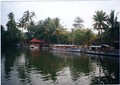 Backwaters in Alappuzha.