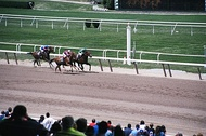 Belmont Park on Long Island hosts the Belmont Stakes, part of the horse racing Triple Crown