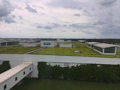 Green roof in 2019