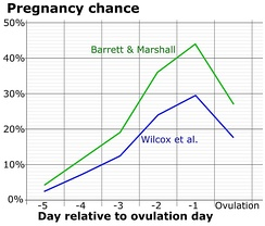 Chance of fertilization by menstrual cycle day relative to ovulation.[8]