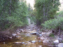 A rocky creek in Spearfish Canyon, South Dakota, US