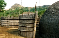 A traditional Swazi homestead