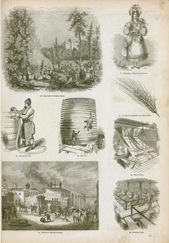 An illustration of brewing and distilling industry methods in England, 1858