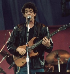 Reed performing live during a benefit concert for A Conspiracy of Hope in East Rutherford, New Jersey, 1986