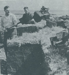 Falkland Islanders shovelling peat in the 1950s
