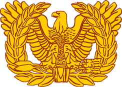 "U.S. Army Warrant Officer branch ""Rising Eagle"" insignia officially in use from 1920 to 2004, and still used today to represent the Warrant Officer Cohort[5] within the overall Officer Corps."