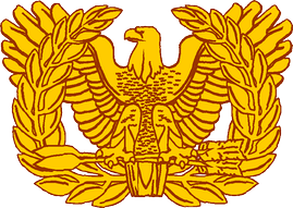 "Former U.S. Army Warrant Officer branch insignia, called the ""Rising Eagle""—in use from 1920 to 2004—which is still used to represent the Warrant Officer Cohort.[4]"