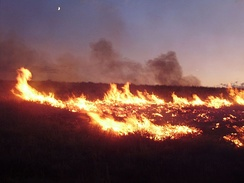 Lightning-sparked wildfires are frequent occurrences during the dry summer season in Nevada.