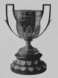 "The ""Copa Campeonato"" trophy was awarded to Primera División champion from 1896 until 1926.[1] From 2013 to 2015, it was given to the Superfinal winner.[2]"