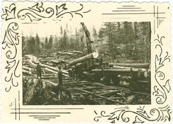 Lithuanian deportees preparing logs for rafting on the Mana River