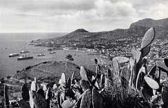 View of Funchal's bay in 1936