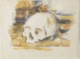 Study of a Skull, 1902–04, Henry and Rose Pearlman Collection on long-term loan to the Princeton University Art Museum