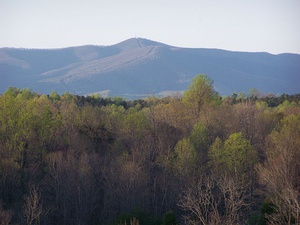 Bull Mountain in Patrick County