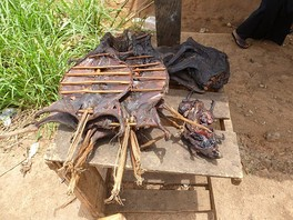 Bushmeat is often smoked prior to consumption.