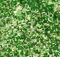 Farmland in Kansas divided into quarter sections