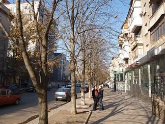 Demiokhina Luhansk 002.jpg